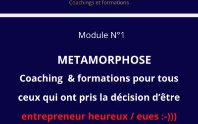 Formation & Auto-coaching pour entrepreneur heureux