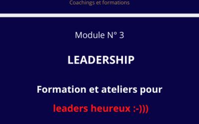 MODULE N° 3 : LEADERSHIP